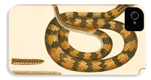 Rattlesnake IPhone 4 Case by Mark Catesby