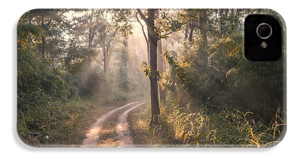 Rays Through Jungle IPhone 4 Case by Hitendra SINKAR