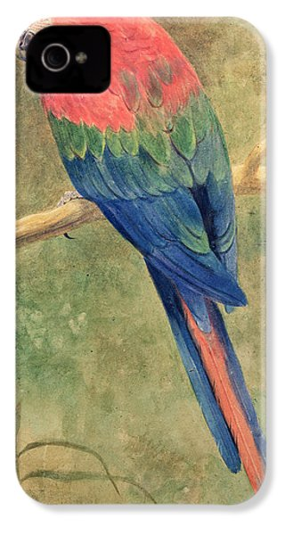 Red And Blue Macaw IPhone 4 Case by Henry Stacey Marks