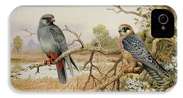 Red-footed Falcons IPhone 4 Case by Carl Donner