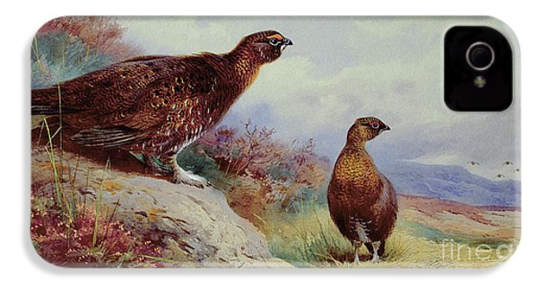Red Grouse On The Moor, 1917 IPhone 4 Case by Archibald Thorburn