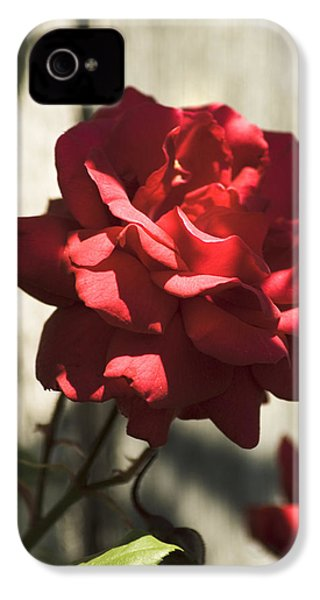 IPhone 4 Case featuring the photograph Red Rose by Yulia Kazansky