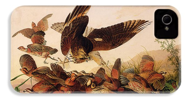Red Shouldered Hawk Attacking Bobwhite Partridge IPhone 4 / 4s Case by John James Audubon
