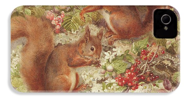 Red Squirrels Gathering Fruits And Nuts IPhone 4 / 4s Case by Rosa Jameson