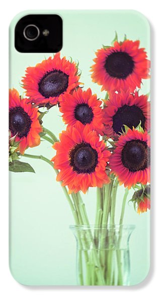 Red Sunflowers IPhone 4 Case by Amy Tyler