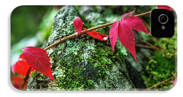 IPhone 4 Case featuring the photograph Red Vine by Bill Pevlor