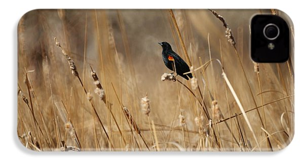Red Winged Blackbird IPhone 4 / 4s Case by Ernie Echols