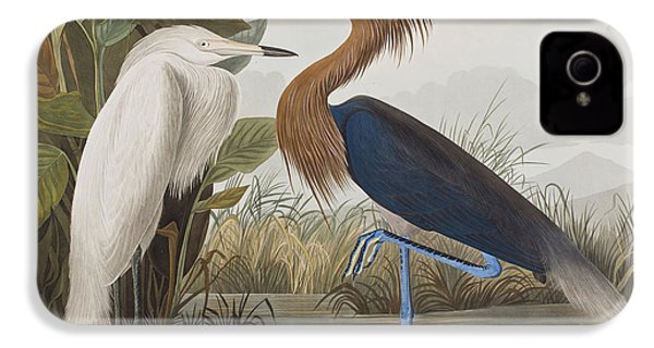 Reddish Egret IPhone 4 Case by John James Audubon