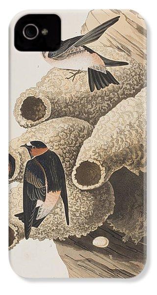 Republican Or Cliff Swallow IPhone 4 Case by John James Audubon
