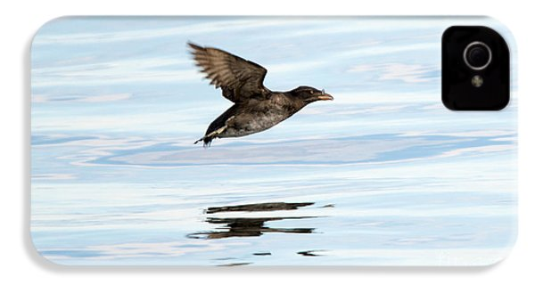 Rhinoceros Auklet Reflection IPhone 4 Case