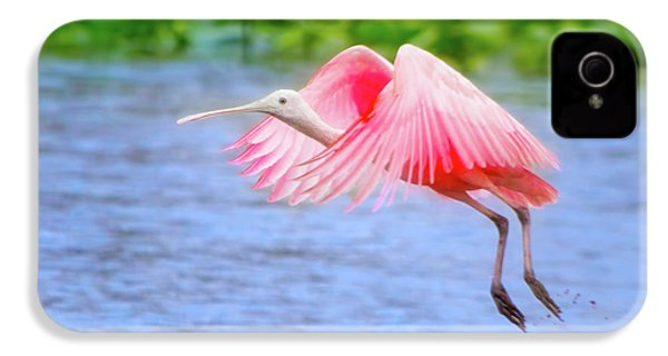 Rise Of The Spoonbill IPhone 4 Case by Mark Andrew Thomas
