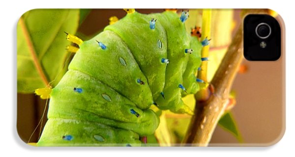 IPhone 4 Case featuring the photograph Robin Moth Caterpillar by Claire Bull