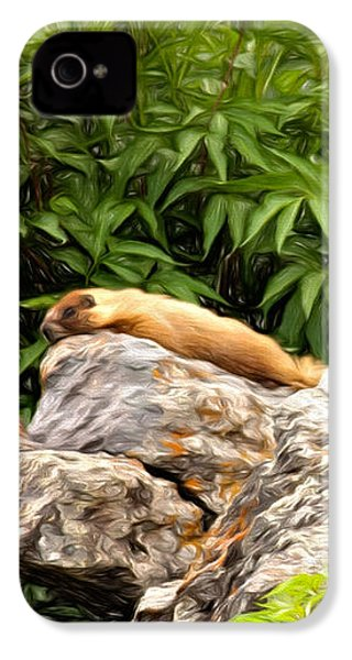 Rock Chuck IPhone 4 Case by Lana Trussell