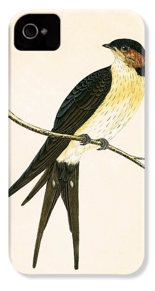 Rufous Swallow IPhone 4 Case by English School