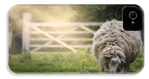 Sheep IPhone 4 / 4s Case by Joana Kruse