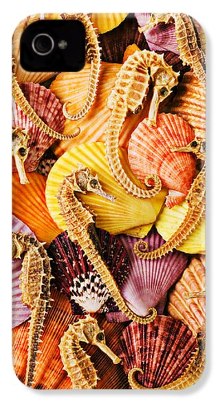Sea Horses And Sea Shells IPhone 4 Case by Garry Gay