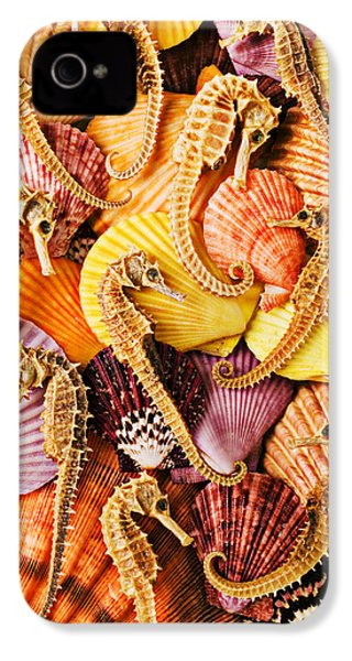 Sea Horses And Sea Shells IPhone 4 / 4s Case by Garry Gay