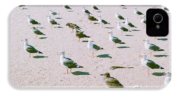 Seagulls  IPhone 4 / 4s Case by Ariane Moshayedi