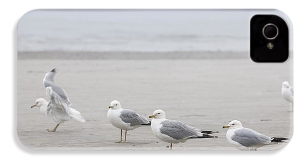 Seagulls On Foggy Beach IPhone 4 Case by Elena Elisseeva