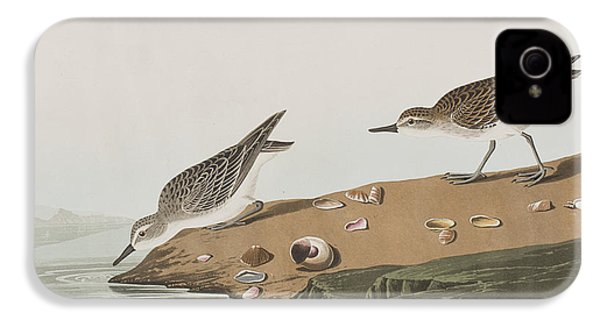 Semipalmated Sandpiper IPhone 4 Case by John James Audubon