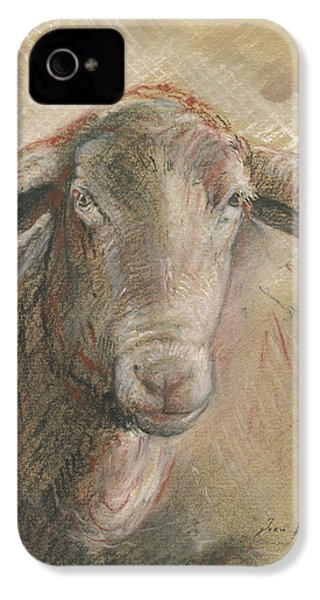 Sheep Head IPhone 4 Case by Juan Bosco