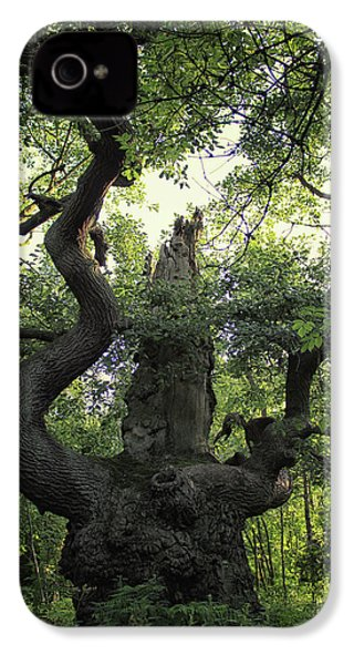 Sherwood Forest IPhone 4 Case by Martin Newman