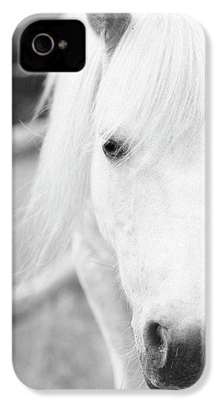 Shetland Pony IPhone 4 Case by Tina Lee