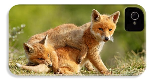Sibbling Love - Playing Fox Cubs IPhone 4 Case