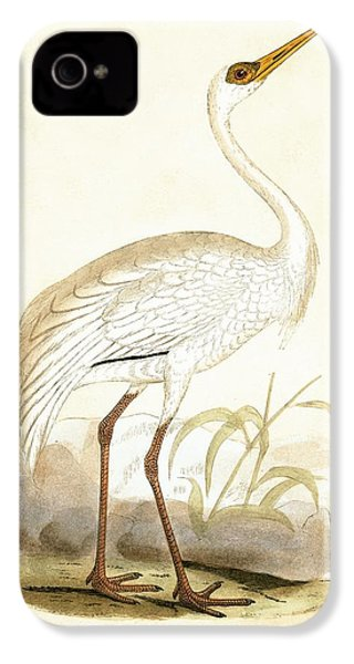 Siberian Crane IPhone 4 / 4s Case by English School