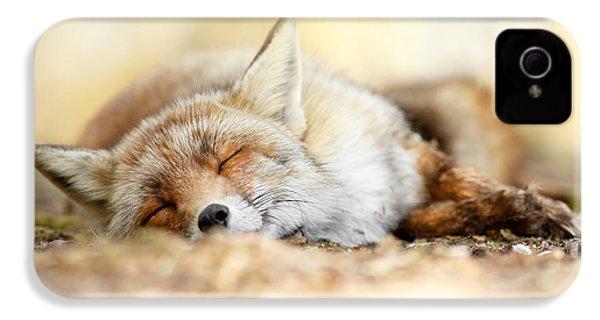 Sleeping Beauty -red Fox In Rest IPhone 4 Case