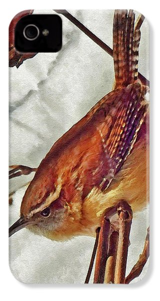 Slim Pickens, Carolina Wren IPhone 4 Case by Ken Everett