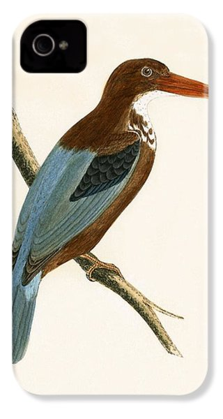 Smyrna Kingfisher IPhone 4 Case by English School