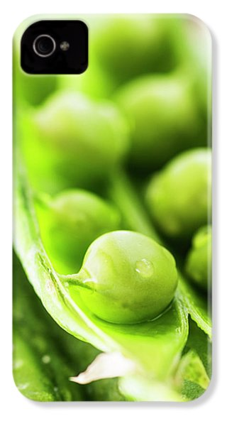 Snow Peas Or Green Peas Seeds IPhone 4 Case by Vishwanath Bhat