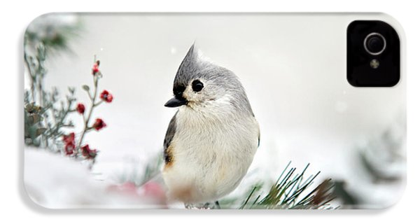 Snow White Tufted Titmouse IPhone 4 Case by Christina Rollo