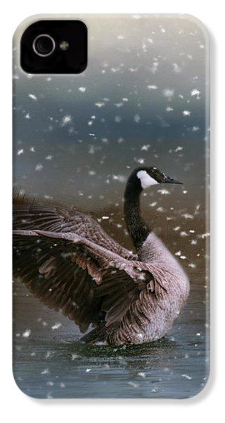 Snowy Swim IPhone 4 Case by Jai Johnson