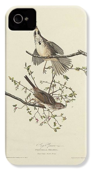 Song Sparrow IPhone 4 / 4s Case by Anton Oreshkin