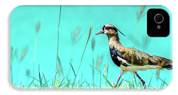 Southern Lapwing IPhone 4 Case by Randy Scherkenbach