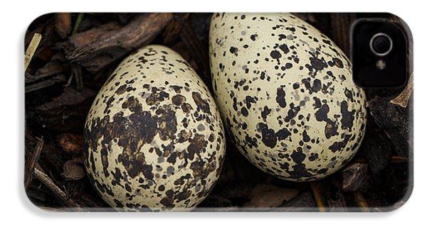 Speckled Killdeer Eggs By Jean Noren IPhone 4 Case by Jean Noren