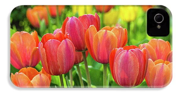 IPhone 4 Case featuring the photograph Splash Of April Color by Bill Pevlor