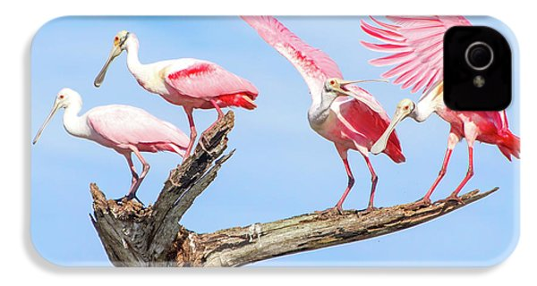 Spoonbill Party IPhone 4 Case by Mark Andrew Thomas