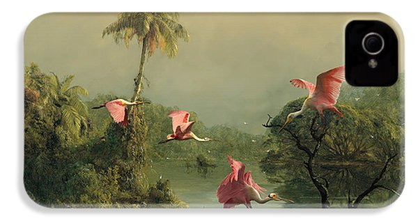 Spoonbills In The Mist IPhone 4 Case by Spadecaller