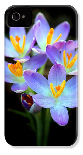 IPhone 4 Case featuring the photograph Spring Crocus by Jessica Jenney