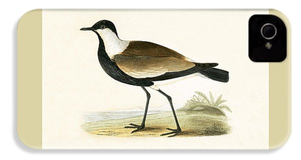 Spur Winged Plover IPhone 4 Case by English School