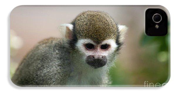 Squirrel Monkey IPhone 4 Case by Amanda Elwell