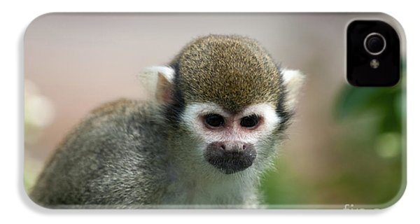 Squirrel Monkey IPhone 4 / 4s Case by Amanda Elwell