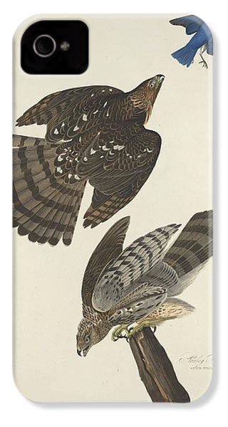 Stanley Hawk IPhone 4 Case by Rob Dreyer