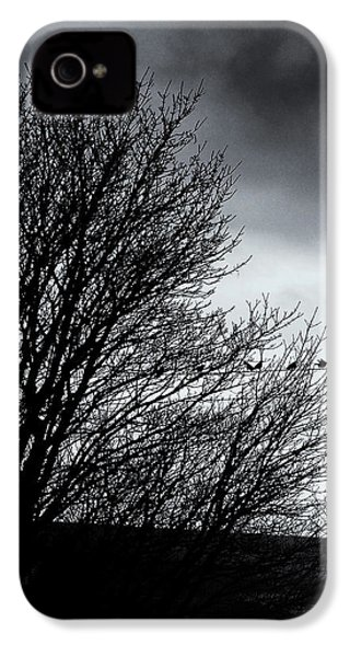 Starlings Roost IPhone 4 Case by Philip Openshaw