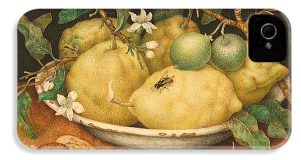 Still Life With A Bowl Of Citrons IPhone 4 Case by Giovanna Garzoni