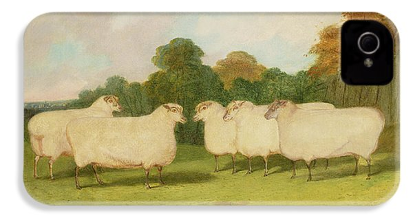 Study Of Sheep In A Landscape   IPhone 4 / 4s Case by Richard Whitford