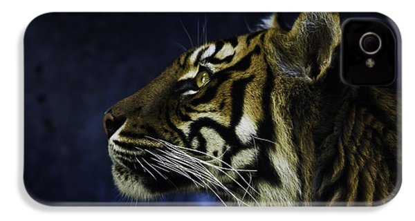 Sumatran Tiger Profile IPhone 4 Case by Avalon Fine Art Photography